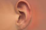 Gehörbildungsunterricht in Hildesheim